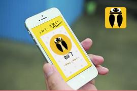 东方智启科技APP开发-知了电商手机软件开发案例
