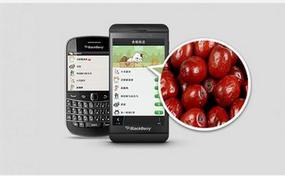 东方智启科技APP开发-生鲜配送安卓软件开发