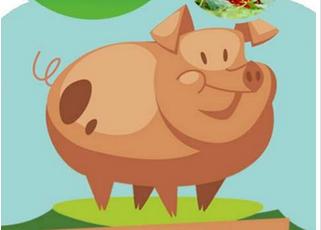 东方智启科技APP开发-解读养猪APP开发 满满都是生意经