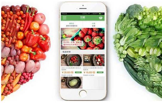 生鲜app千赢国际娱乐老虎机,生鲜app软件千赢国际娱乐老虎机