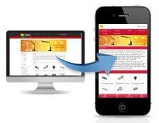 东方智启科技APP开发-手机网站开发解决方案