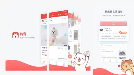 东方智启科技APP开发-结合功能特色进行有宠app点评