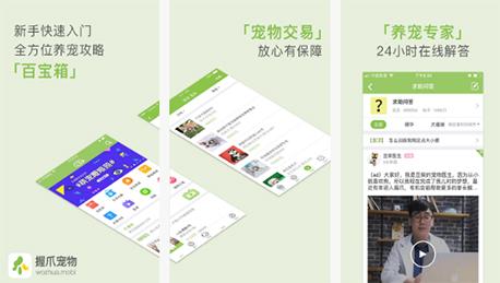 东方智启科技APP千赢国际娱乐老虎机-不一样的握爪宠物app点评