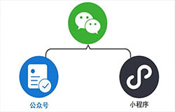东方智启科技APP开发-微信小程序开发前景如何