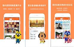 东方智启科技APP千赢国际娱乐老虎机-狗管家app评价 狗管家app好用吗