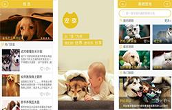 东方智启科技APP开发-宠物主义APP点评 宠物主义APP如何