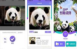 东方智启科技APP开发-大熊猫认脸APP开发 告别脸盲症