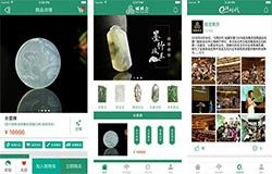 东方智启科技APP开发-珠宝宝石交易蟠桃会app点评